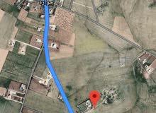 للبيع ارض 5.5 دونم في حواره جنوب عمان