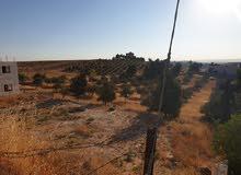 قطعه ارض 750 متر في منطقه البن للبيع