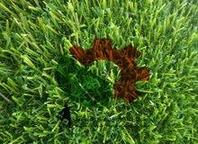 عشب صناعي مستعمل