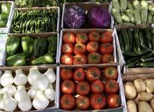 مطلوب ممول لمشروع تجارة مواد غذائية
