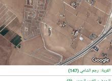للبيع ارض 5دونم في رجم الشامي شارع الميه