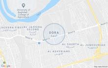 قطعة ارض 100 م في بغداد الدورة