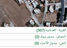 ارض سكنيه للبيع في الكرك العدنانية _ضاحية الحاج عبيد