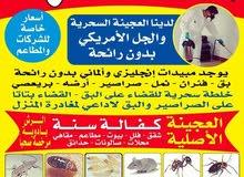 المكافحة الحشرات  للقضاء علي صراصير المطبخ والعجينه الا صليه و للقضاء علي البق خدمه 24ساعه