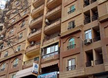 شقة فاخرة 255 م للبيع بالمريوطية