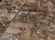 ارض 4300م في ام العمد قرب الاندلسيه تصلح مزرعه او للاستثمار