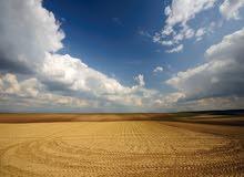 للبيع ارض في واحة ياس