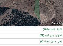 ارض مزروعة بأشجار الزيتون للبيع بسعر مغري