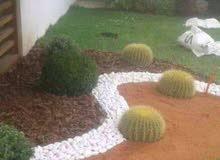 جميع نباتات