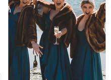 EMBA the american mink luxury rare quality