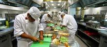 عمال مطبخ (( استيور )) بفندق بشرم الشيخ
