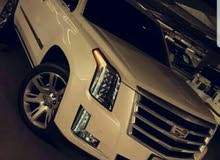 2016 Cadillac Escalade for sale at best price