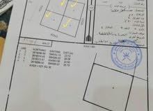 للبيع ارض قطع ممتازات مربعات و كورنرات في بركاء الهرم شمال خلف جامع الهرم القطعة بـ(16000)رع