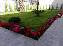 مهندس زراعي لتصميم وتنسيق الحدائق