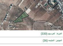 قطعة الارض البيع في اربد كفرسوم