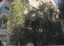 excellent finishing apartment for rent in Amman city - Al-Jabal Al-Akhdar