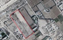 للاستثمار ارض للبيع في كينج مريوط