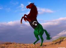رقم فبراير ليبيا نا للبيع