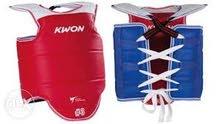 hugo taekwondo