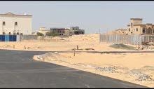 ارض سكنية للبيع فى منطقة الياسمين - على شارع الحليو / الزبير - عجمان KBH 06