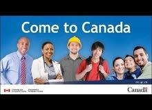 مطلوب الان سائقين سائقين شاحنات و حافلات في كندا في مزايا عالية !!