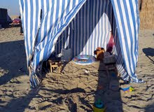 خيمة بحر للايجار