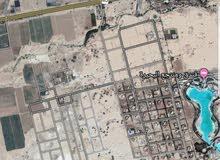 ارض 750 م في البحر الميت بجانب البحيرة منطقة الجلد