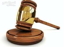 المحاميه زهراء علاء