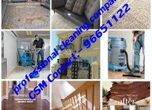 Professional cleaning company + general cleaning house of flats