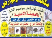 مكافحه حشرات وقوارض جميع المناطق كفاله سنه/55798242