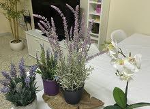نباتات صناعيه للديكور راقيه