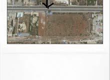 للايجار هكتار على طريق المطار على الرئيسي أمام مصنع الألبان بوعطني