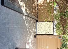 Luxurious Villa in Salamniya Area