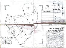 ارض للبيع في مدينة الخليل - عيصى - وادي الزرزير - في منطقة مطلة وهادئة