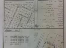 أرض سكنية للبيع في بركة الموز / حي البركة