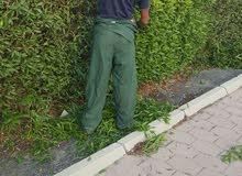 ابو حبيبة لقص الثيل والاشجار والشجيرات وتنظيف الحدائق