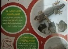 شركة الكويت فخر العرب لمكافحة الحشرات والقوارض
