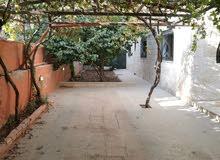 شقة فارغة الايجار 3نوم خلدا خلف مخابز براديس أرضية مع حديقة ومدخل خاص