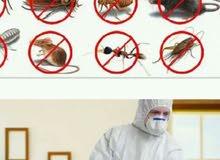 ش\الشروق لمكافحة الحشرات الضارة بجميع. انوعها 0544972283