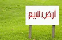 البنيات حوض قرية مرعي
