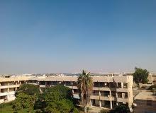شقه 105م بقرية الجندول موقع مميز ترى البحر وفندق توليب غيرمجروحه امام مربع اخضر