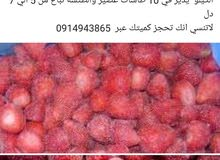 فراولة وطنية مجمدة