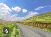 ارضي مساحة 3401 متر للبيع في العالوك بالأقساط