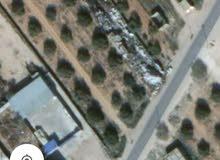 أرض للبيع نصف هكتار تقريبا في إدواو على الرئيسي