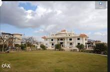 قصر بالشيخ زايد بكمبوند رويال سيتي للبيع  كود رقم 25