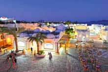 بار بوي في شرم الشيخ