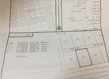 أرض للبيع مخطط 111 (لوى الجديدة)