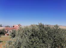 مزرعه مع بيت 9 دونمات ونصف قريبه لعمان  دقائق من جسر ابو نصير