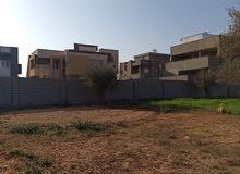433م سكنية الشارع المقابل لجامع بن حسن