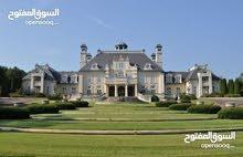 قصر فاخر للبيع